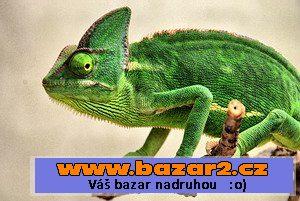 Chameleon bazar